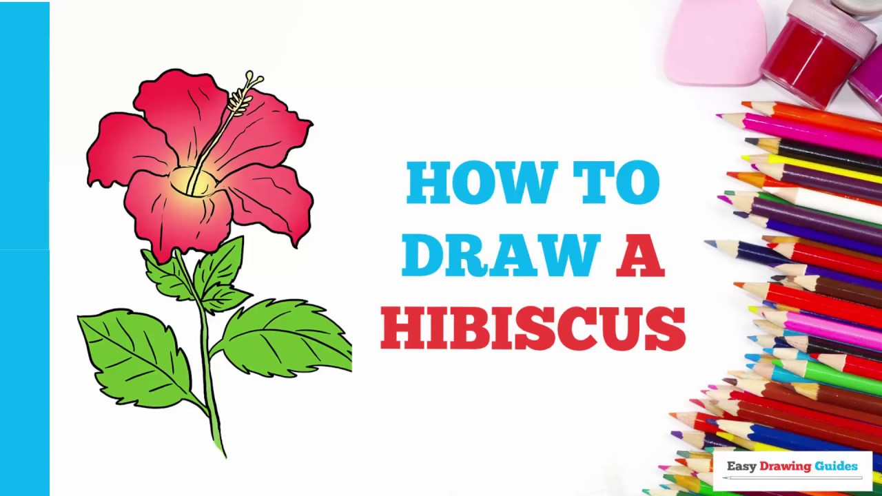 How To Draw A Hibiscus Really Easy Drawing Tutorial