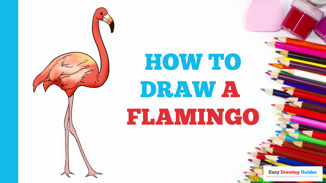How To Draw A Flamingo Really Easy Drawing Tutorial