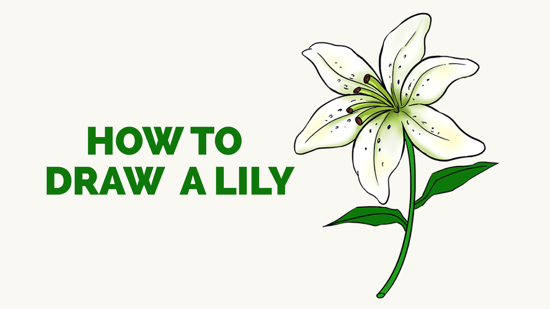 How To Draw A Lily Step By Step Drawing Tutorial Easy Drawing Guides