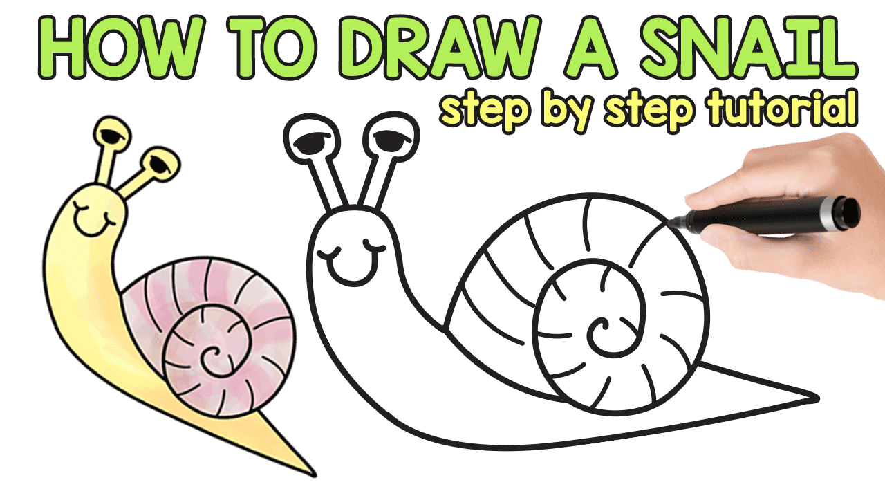 How to Draw a Snail (cute) - Easy Step by Step Tutorial - Easy Peasy ...