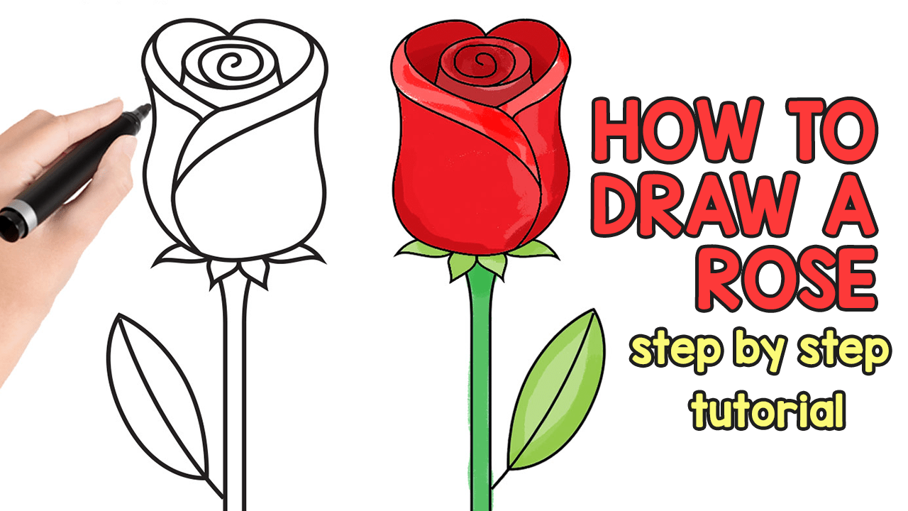 how to draw a rose easy step by step for beginners and kids easy